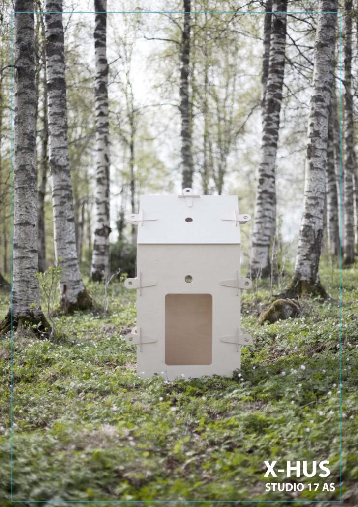 X-hus i bjørkeskog copy